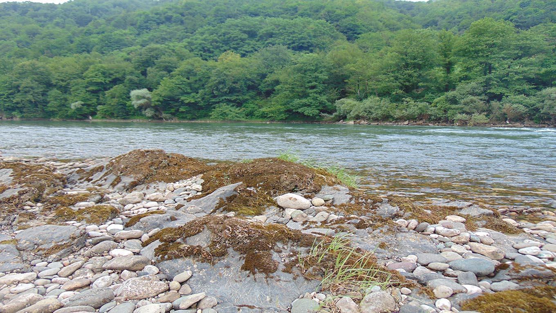 Reka Drina - odmoruprirodi.rs