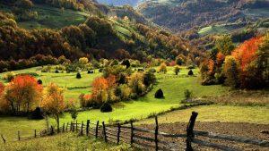 Zlatibor - Odmor u prirodi